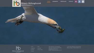 Hillary Billinghurst Photography Cheltenham